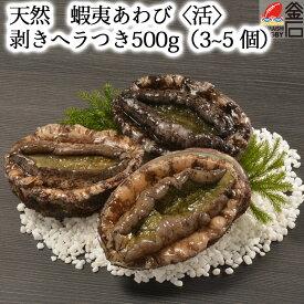 【送料無料】天然 蝦夷あわび〈活〉 500g (3~5 個) 剥きヘラつき ヤマキイチ商店