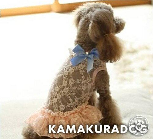 ◆メール便送料無料◆【鎌倉ドッグ】【犬 服 セール】フェアリーレースワンピース