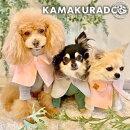 【犬服】おでかけケープ