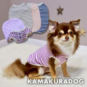 【犬の服】キャンディボーダータンク
