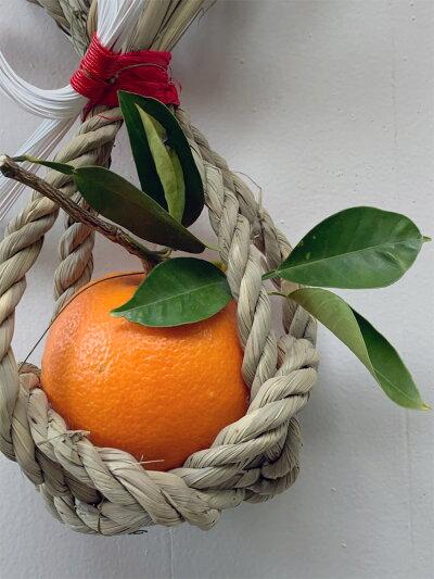 【橙(ダイダイ)】素朴で味のあるお正月飾り・和モダンな逸品