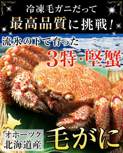 3特印の堅蟹だけに限定!上物の姿毛がにです♪
