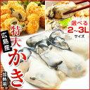 3Lまたは2Lサイズが選べる!広島県産特大サイズ牡蠣(総重量1kg・内容量850g)
