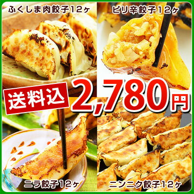 ふくしまギョーザ4種セット(肉餃子12ヶ、ピリ辛ぎょうざ12ヶ、ニンニクギョウザ12ヶ、ニラ餃子12ヶ)