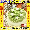 ずんだ モンブラン 5号サイズ 変わった 誕生日ケーキ お母さん 女性 にも人気! サプライズ ギフト ケーキ スイーツ プレゼント