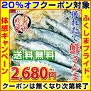 【クーポン使用で20%オフ】いわき市小名浜より選別&発送!鮮さんま15尾入(1尾あたり約120〜140g)※店側でクーポンの後付けは出来ま…