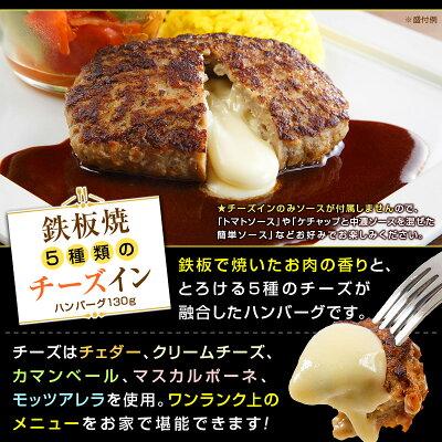 デミ・和風・チーズから選べる!ベストの美味しいハンバーグ&日東ベストの牛丼DXセット