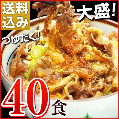 日東ベストの牛丼DX【185g×40パック】