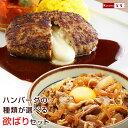 牛丼 ハンバーグ 温めるだけ 【デミ・和風・チーズから選べる!ベストの美味しいハンバーグ & 日東ベスト の牛丼DX …