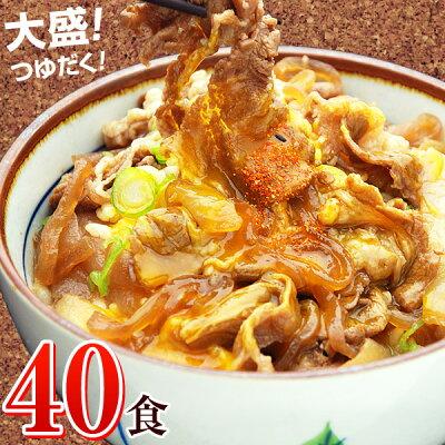 大盛りつゆだく!日東ベストの牛丼DX【185g×40パック】送料込み