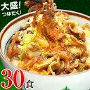 日東ベストの牛丼DX【185g×30パック】