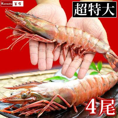 【送料込み】皇帝の海老ブランド・天然シータイガー(超特大サイズ・4尾)