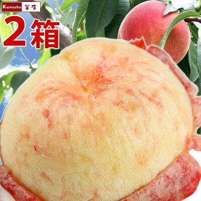 特秀品。福島の桃をお届け!