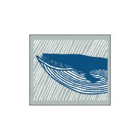 【ポイント5倍設定中!】e.スポンジワイプ kata kata くじら ブルー/グレー サステナブル セルロース ふきん 誕生70年 スウェーデン 木から生まれた 土に還る素材 天然素材