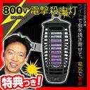 800V電撃殺虫灯 シマ蚊退治 害虫退治 電撃殺虫ランタン