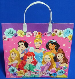ディズニープリンセス(Disney Princess)ハッピーバッグ(バッグに入った文具福袋)(5362429C)