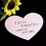 [DMS-001]【かわいい♪型抜きメッセージカード】幸せが訪れる?!ハートのメッセージカード[20枚入(4色×各5枚入)]