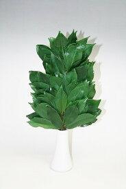 プリザーブド榊 榊造花とは違い、生葉を使用 神具 1本での販売となります。