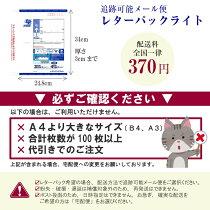 【特殊紙】北雪90kg(0.12mm)【ファンシーペーパー印刷用紙ケント紙カード厚紙】