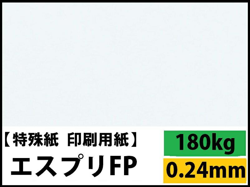 【特殊紙】エスプリFP 180kg(0.24mm) A4 50枚【キャストコート 製袋用 ツルツル】