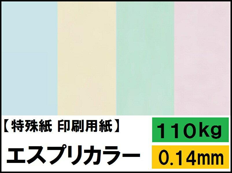 【特殊紙】エスプリカラー 110kg(0.14mm)【プリンター用紙 キャストコート】