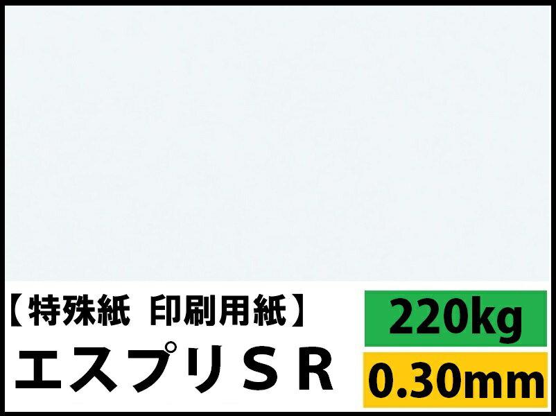 【特殊紙】エスプリSR 220kg(0.30mm) A4 50枚【キャストコート 再生紙 ツルツル】