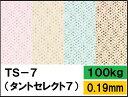 【特殊紙】TS-7(タントセレクト7) 100kg(0.19mm)選べる16色【ファンシーペーパー 印刷用紙 型押し模様 エンボス】