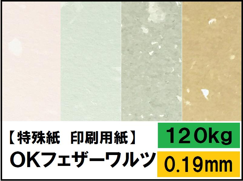 【特殊紙】OKフェザーワルツ 120kg(0.19mm)選べる9色【ファンシーペーパー 印刷用紙 表紙 ウェディング ブライダル ブレンド模様 和風 洋風 しおり 遊び紙】
