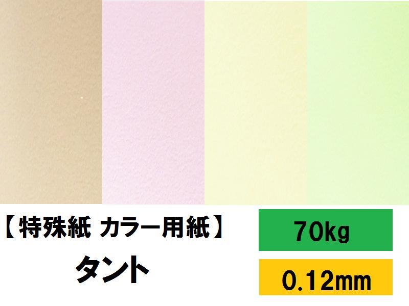 【特殊紙】タント 70kg(0.12mm) R色 A4 100枚【TANT ファンシーペーパー 印刷用紙 ラフ肌 柔らかいエンボス】