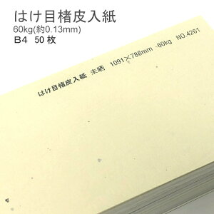 【 和紙 】 はけ目楮皮入紙 未晒 厚さ 60kg ( 0.13mm ) B4 50枚   和風 ナチュラル 柄 懐紙 遊び紙 書簡紙 メニュー 料理 掛け紙 ランチョンマット ブックカバー