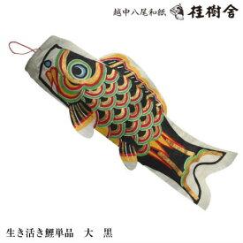 【桂樹舎】 071 鯉のぼり単品(大) 日本の心がこもる【越中八尾の和紙】