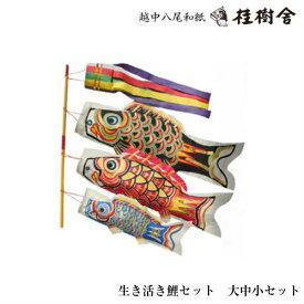 【7/31までポイント5倍】【送料無料】【桂樹舎】 069 鯉のぼりセット(大中小)セット 日本の心がこもる【越中八尾の和紙】