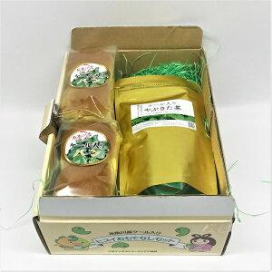 【ギフトセット】ケール入りソフトフランスパン2袋・ケールティー15個入1袋
