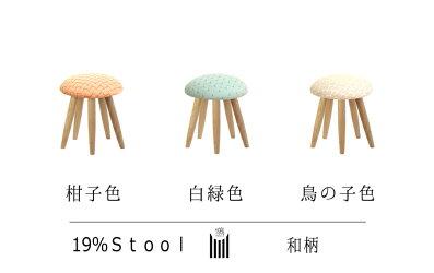 19%/Stool