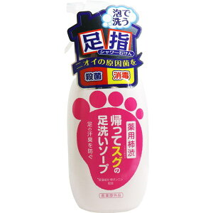 足のにおい対策 臭い消し 石鹸 足洗用ソープ 薬用柿渋 帰ってスグの足洗い 250ml 体臭予防