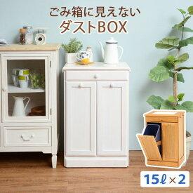 分別ペールカウンター 2分別ダストボックス 15リットル キッチン用ゴミ箱 幅47cm 高さ71cm