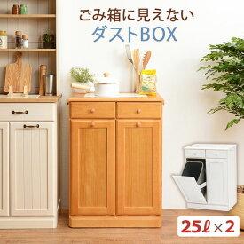 分別ペールカウンター 2分別ダストボックス 25リットル キッチン用ゴミ箱 幅59cm 高さ81cm