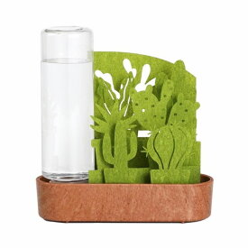 ペーパー加湿器 エコ加湿器 給水ボトル付き 本体 自然気化式 うるおい サボテン寄せ植え 日本製