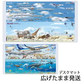 デスクマット くらべる図鑑 YDS-270KZ小学館の図鑑NEO もっとくらべる図鑑 2020年 コイズミ 【数量限定】【送料無料】北海道・九州は送料500円かかります。