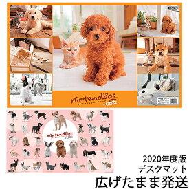 デスクマット ニンテンドッグス+キャッツ Nintendogs+cats DM-9DKR 犬 ネコ マット シート 数量限定 くろがね 2020年 任天堂 ニンテンドーDS ※北海道・九州は送料500円かかります。