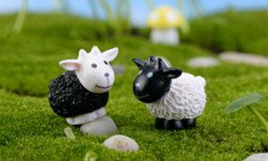 ひつじ 黒白 お買い得20個 羊 動物フィギュア テラリウムフィギュア ミニチュア ミニフィギュア コケリウム ドールハウス 苔盆栽