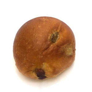 ≪selfish color BIKKE≫プレミアムバターロール(レーズン)(5個入)【糖質制限】【低糖質】【糖質オフ】【ロールパン】
