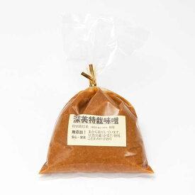 ≪JAアルプス≫(深美糀店)深美特栽味噌(400g入り)