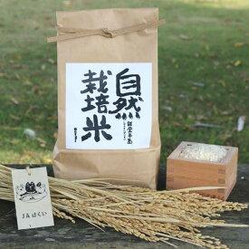 ≪JAはくい≫はくい自然栽培米のとひかり(玄米)5kg【平成30年産米】【送料無料】