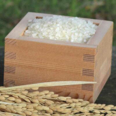 ≪JAはくい≫はくい自然栽培米コシヒカリ(精米)1kg【平成29年産米】