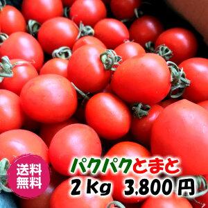 【送料込み】パクパクとまと 2kg 3,800円 ミニトマト!高糖度!うす皮!産地直送!