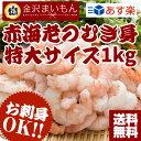 【2個買ってネギトロ】【生食可】送料無料 むきエビ 生食可能!赤海老むき身1kg 海老 ムキエビ むきえび むきエビ 海…