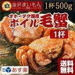 【送料無料】金沢まいもん寿司が厳選!毛ガニ特大サイズ500g×1尾毛蟹けがに毛がに