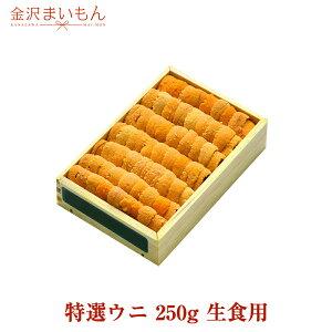 【築地直送】金沢まいもん寿司厳選!特選ウニ 250g 生食用 うに ウニ 雲丹【送料無料】
