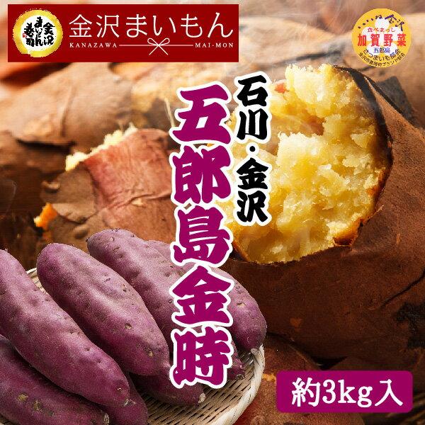 【送料無料】 さつまいも 五郎島金時 Mサイズ 3kg サツマイモ さつま芋 加賀野菜 石川県産 金沢まいもん寿司厳選 焼き芋 ふかし芋 五郎島金時1箱3kg